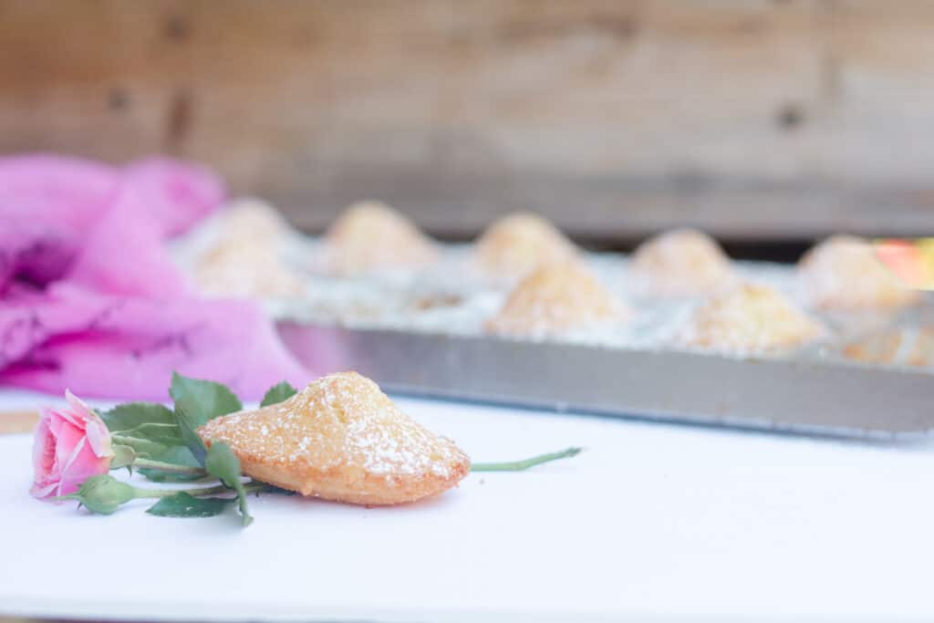 Rose water madeleines with a rose in front of the madeleines mold.